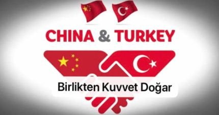 china turkey solidarity2